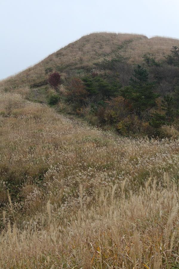 秋の風景.JPG